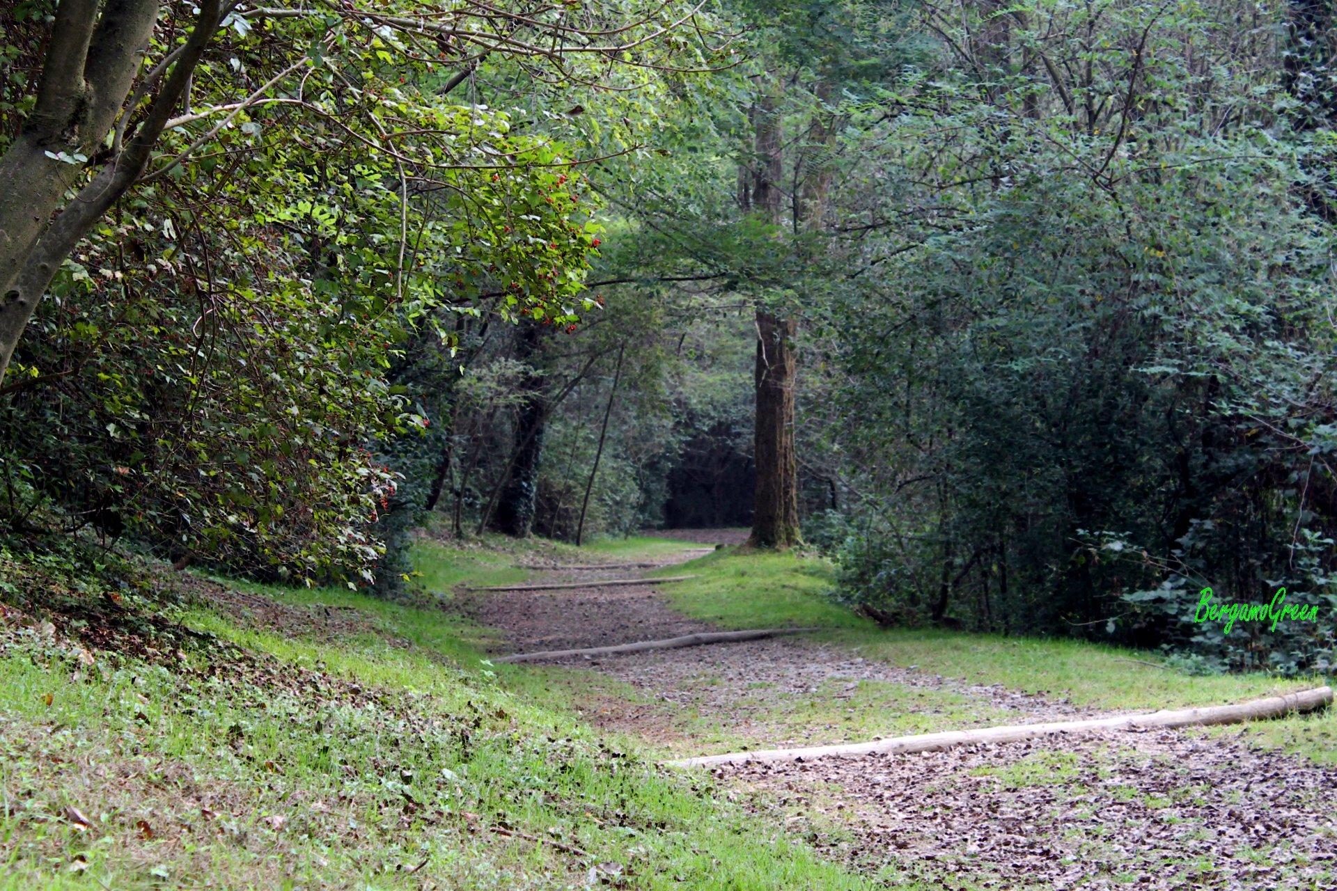 Sentiero di Ilaria