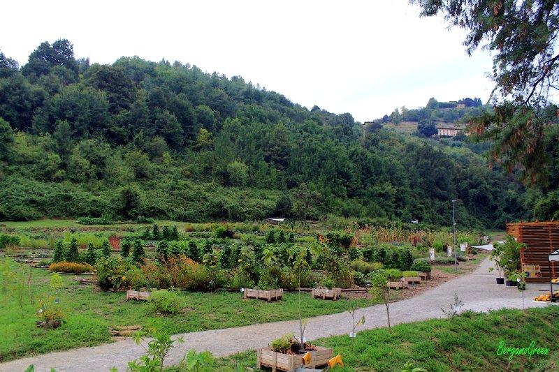 Orto botanico ad Astino