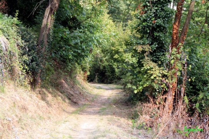 Sentiero dei Vasi