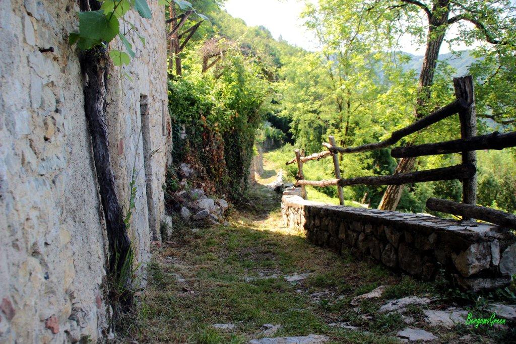 Sedrina alla Località Roccoli